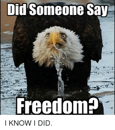 did-someone-say-freedom-i-know-i-did-21296255.png